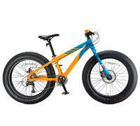 Inobike Traveler Boy 24""