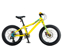 Inobike Traveler Kid 20""