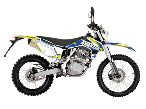 Мотоцикл Avantis Enduro FX 250 (172 FMM Design HS 2019) с ПТС - Фото 0