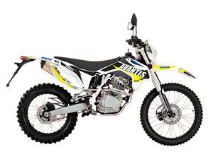 Мотоцикл Avantis Enduro FX 250 LUX (172 FMM Design HS 2019) с ПТС - Фото 0
