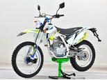 Мотоцикл Avantis Enduro FX 250 LUX (172 FMM Design HS 2019) с ПТС - Фото 2
