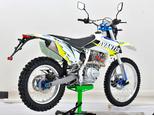 Мотоцикл Avantis Enduro FX 250 LUX (172 FMM Design HS 2019) с ПТС - Фото 3