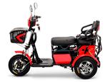 Электротрицикл Companion 500W 48V - Фото 3