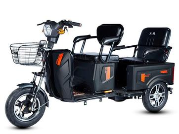 Электротрицикл E-trike Pass Cargo