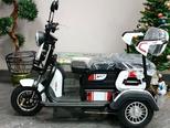 Электротрицикл E-trike TRANSFORMER - Фото 2