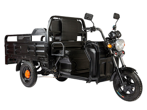 Электротрицикл Rutrike D2 1500 60V1000W - Фото 0