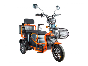 Электротрицикл Rutrike Pass S2 трансформер