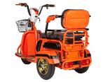 Электротрицикл ANT 500W 48V - Фото 5