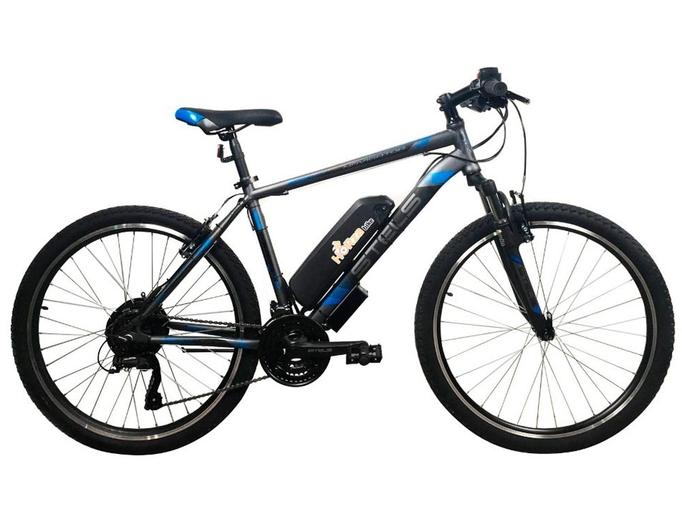 Электровелосипед Horza Stels Dacha v3m2 700W
