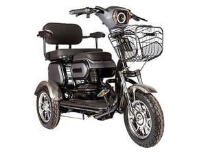Электротрицикл Rutrike S2 V3 двухместный - Фото 0