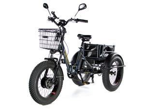 Электрический трицикл фэтбайк E-motions FAT Panda 20 (750W 15Ah) - Фото 0