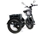 Электрический трицикл фэтбайк E-motions FAT Panda 20 (750W 15Ah) - Фото 12