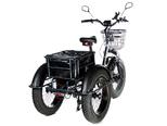 Электрический трицикл фэтбайк E-motions FAT Panda 20 (750W 15Ah) - Фото 5