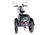 Электрический трицикл фэтбайк E-motions FAT Panda 20 (750W 15Ah) - Фото 6