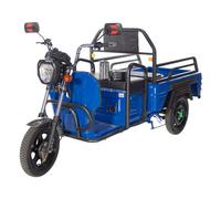 Trike Cargo