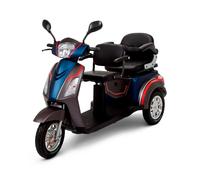 Trike DUAL 650W 60V